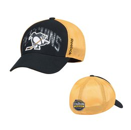 Men's Pittsburgh Penguins Reebok Black 2017 Stadium Series Coach Structured Flex Hat